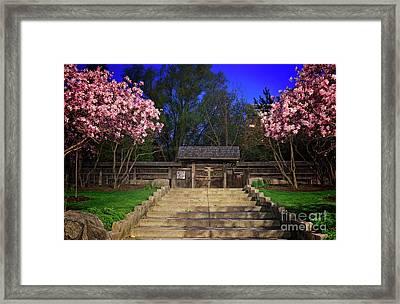 Kariya Park At Night Framed Print by Charline Xia