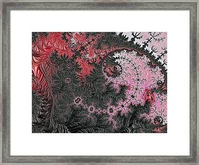 Kashmir Silk Framed Print
