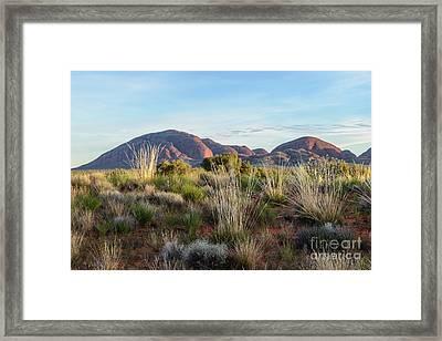 Framed Print featuring the photograph Kata Tjuta 04 by Werner Padarin