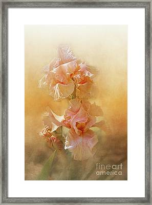 Katerina Framed Print