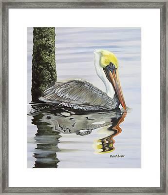 Kathy's Pelican Framed Print by Phyllis Beiser