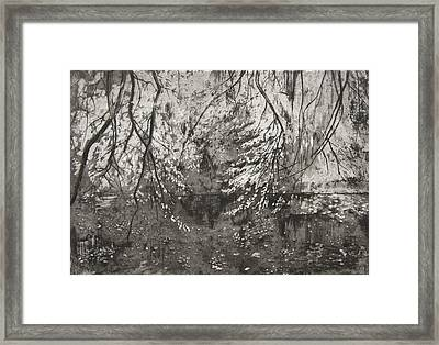Katsura   Benmore Framed Print by Calum McClure