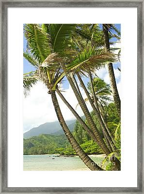 Kauai Beach View Framed Print