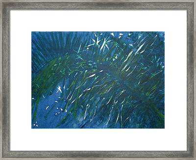 Kauai Night Framed Print by Adrian Simpson