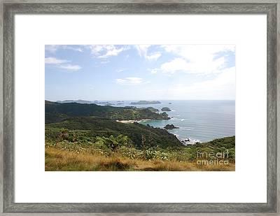 Kauri Cliffs Golf 2 New Zealand Framed Print by Jan Daniels