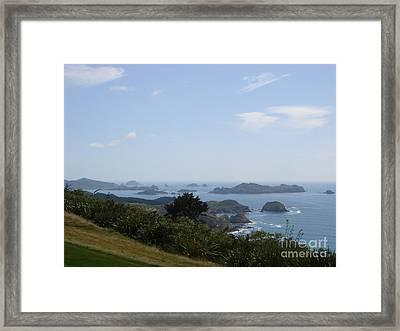 Kauri Cliffs Golf New Zealand Framed Print by Jan Daniels