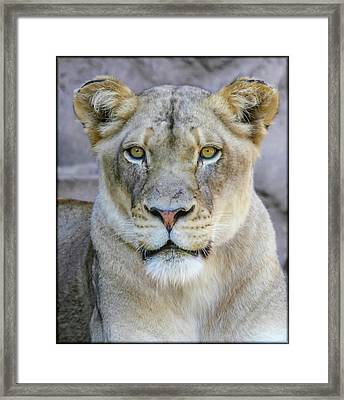 Kaya Portrait Framed Print