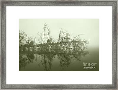 Framed Print featuring the photograph Kayak Trap II by Jan Piller