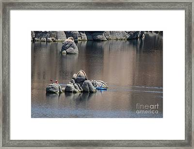 Kayaking On The Lake Framed Print by Anne Rodkin