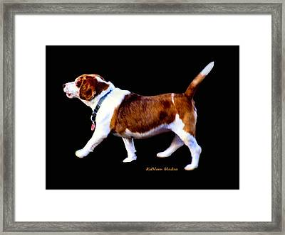 Kc In Motion Framed Print