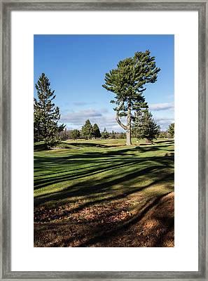 Kebo Greens Framed Print by Brent L Ander