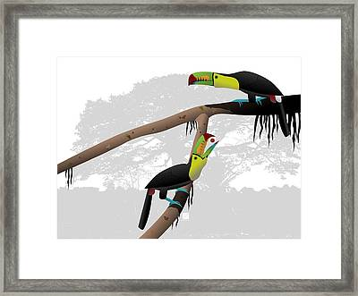 Keel-billed Toucans Framed Print
