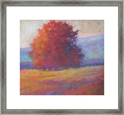 Keene Valley Framed Print by Susan Williamson