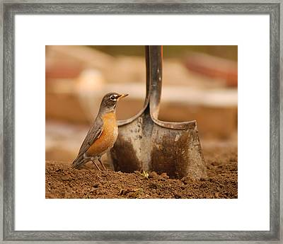 Keep Digging Framed Print by Don Wolf