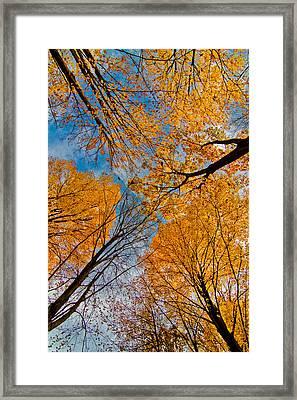 Keep Looking Up Framed Print