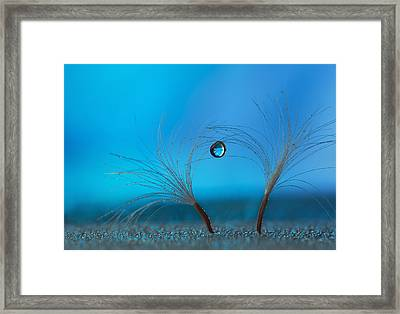 Keep The Balance Framed Print by Heidi Westum