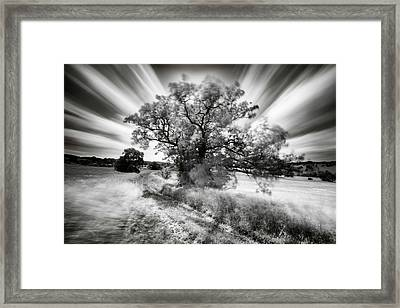 Keeper Of The Light Framed Print by Janek Sedlar