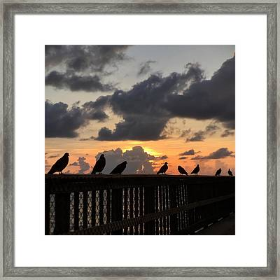 Keeper Of The Pier Framed Print