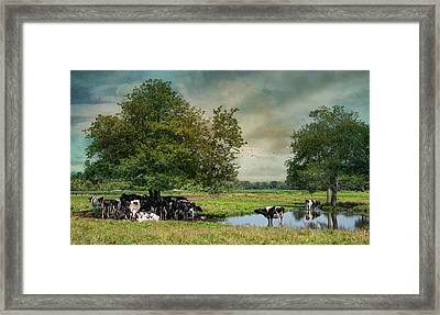 Keepin Cool Framed Print by Robin-Lee Vieira