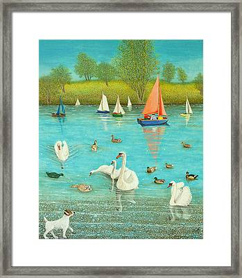 Keeping A Watchful Eye Framed Print by Pat Scott