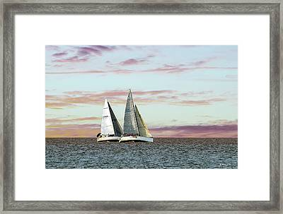 Keeping Pace Framed Print