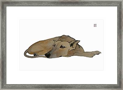 Keeping Watch Framed Print by Richard Williamson