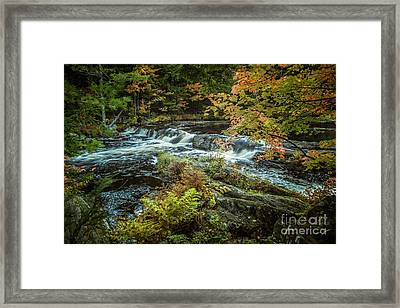 Kejimkujik National Park Framed Print