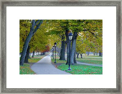 Kelly Drive In Autumn Framed Print