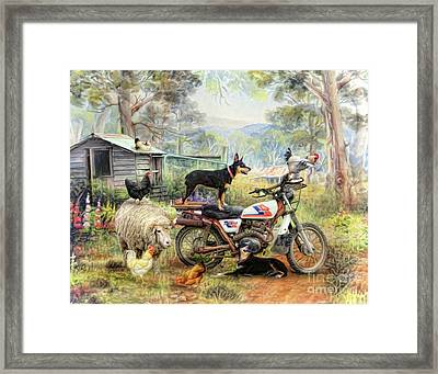 Kelpie Karetakers Framed Print by Trudi Simmonds