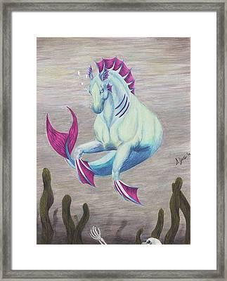 Kelpie Framed Print by Stephanie Yates