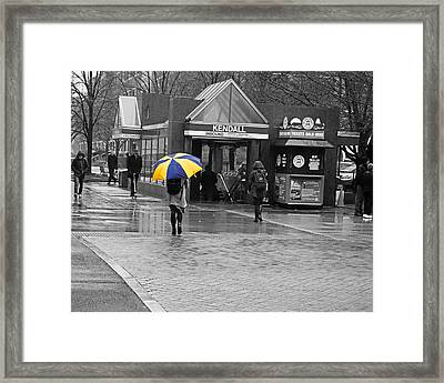 Kendall Square Rainy Day Cambridge Ma Blue And Yellow Framed Print by Toby McGuire