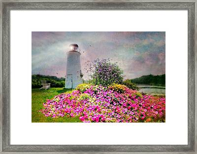 Kennebunkport Lighthouse Framed Print by Diana Angstadt