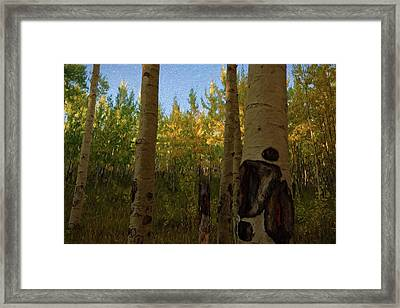 Kenosha Pass Framed Print