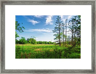Framed Print featuring the photograph Kensington Marsh by Lars Lentz