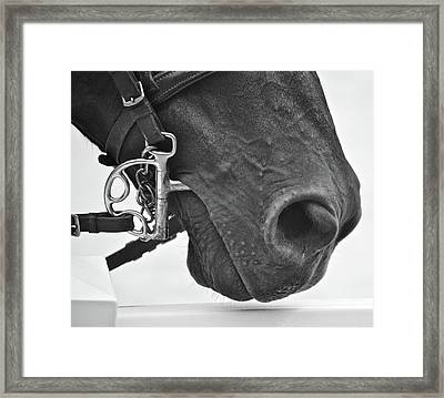 Kentucky Boy Framed Print