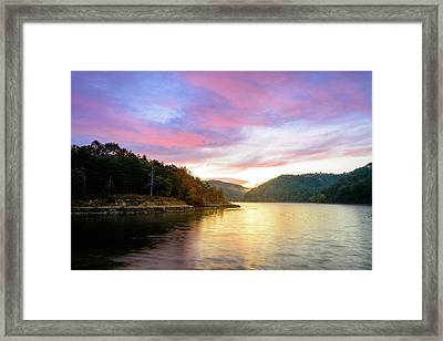 Kentucky Gold Framed Print