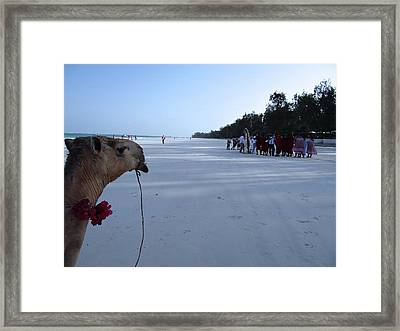 Kenya Wedding On Beach Distance Framed Print