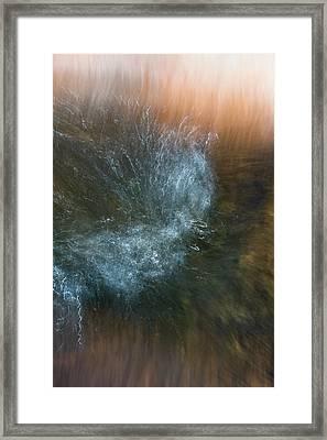 Framed Print featuring the photograph Kerfuffle by Deborah Hughes