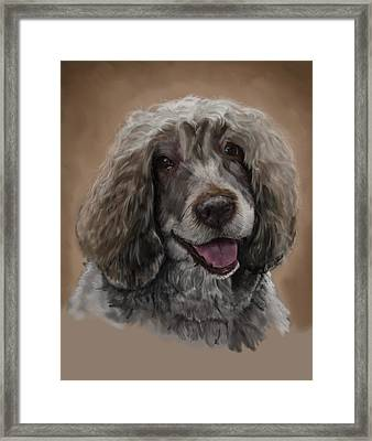 Kerri The Portuguese Water Dog Framed Print by Myke  Irving