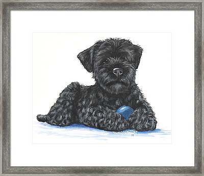 Kerry Blue Terrier Puppy Framed Print by Daniele Trottier