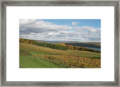 Keuka In Autumn Framed Print
