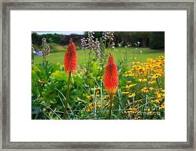Kew Gardens Framed Print