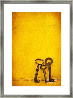 Key Family Framed Print by Priska Wettstein