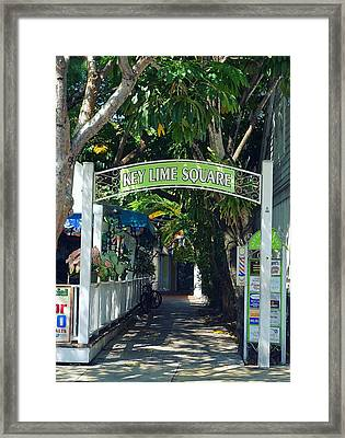 Key Lime Square Framed Print by Laurie Perry
