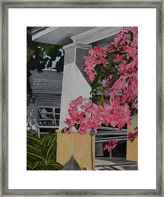 Key West Bougainvillea Framed Print by John Schuller