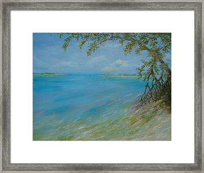 Key West Hanging Out Framed Print by Phyllis OShields