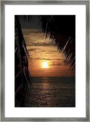Key West Palm Sunset 2 Framed Print
