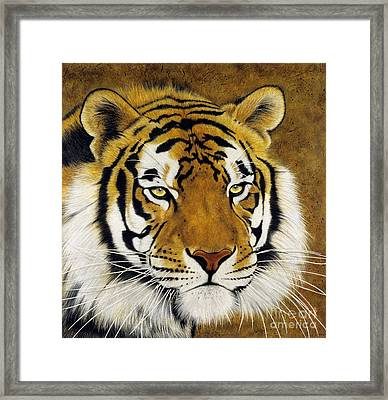 Khan Framed Print by Lawrence Supino