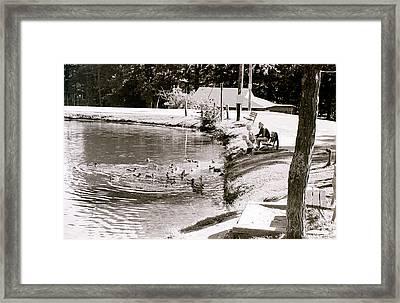 Kids N Ducks Framed Print by Jeff Porter
