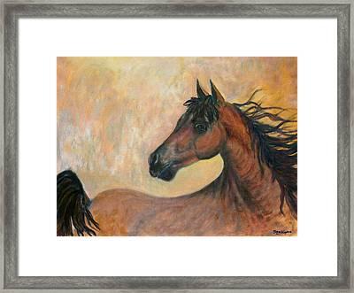 Kiger Mustang Framed Print by Ben Kiger